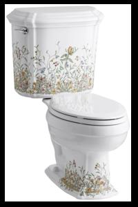 Kohler Toilet Review