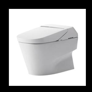 Best One Piece Toilet