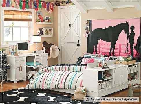 Equestrian Barn House