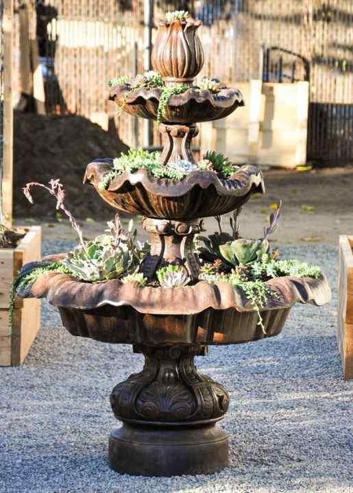 The Succulent Family garden design