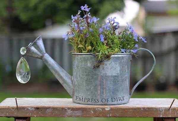 Household Items garden
