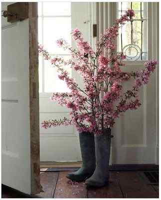 Using an old pair of boots in flower garden